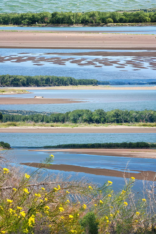 Missouri River Poem: Summer Shadows (detail)